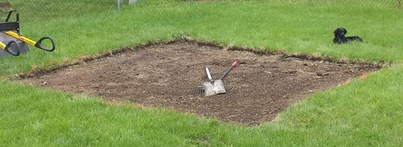 1 - remove grass