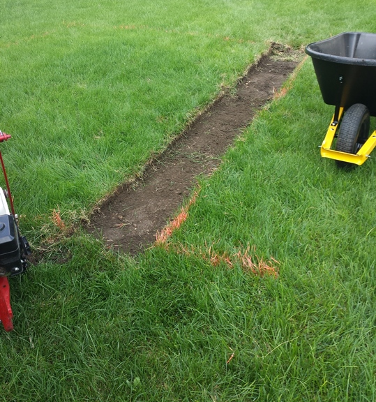 1 - wheelbarrow to move sod
