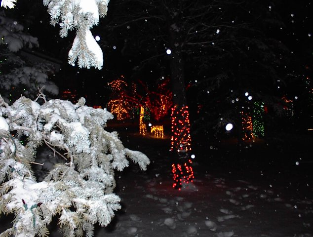 Ten Tips to quickly and safely install Christmas Lights