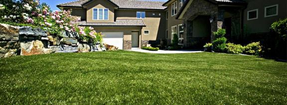 artificial-lawn-millie-rainer
