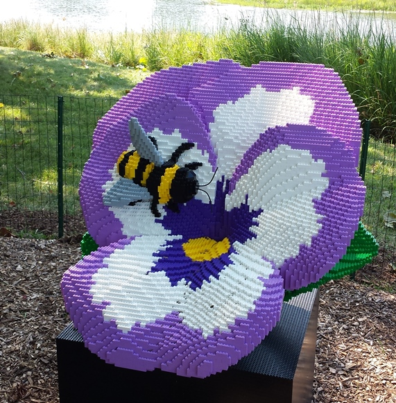 The Bee & the Pansy - 29314 blocks /// 240 hours
