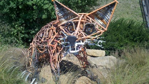 fox-cycle-3