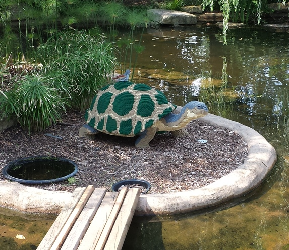 The Tortoise - 23,317 blocks // 250 Hours