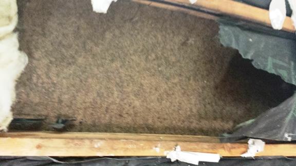 worse-than-grade-3-insulation-2